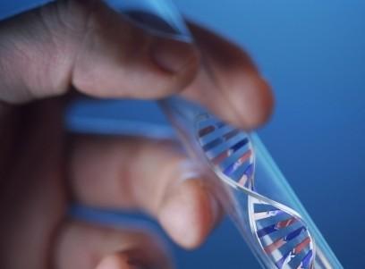 Genes,Arquétipos,Comportamento e Doença